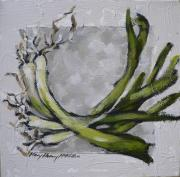MM117: Veg series: Spring Onions