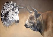 CON WdP12: Nguni Face-Off